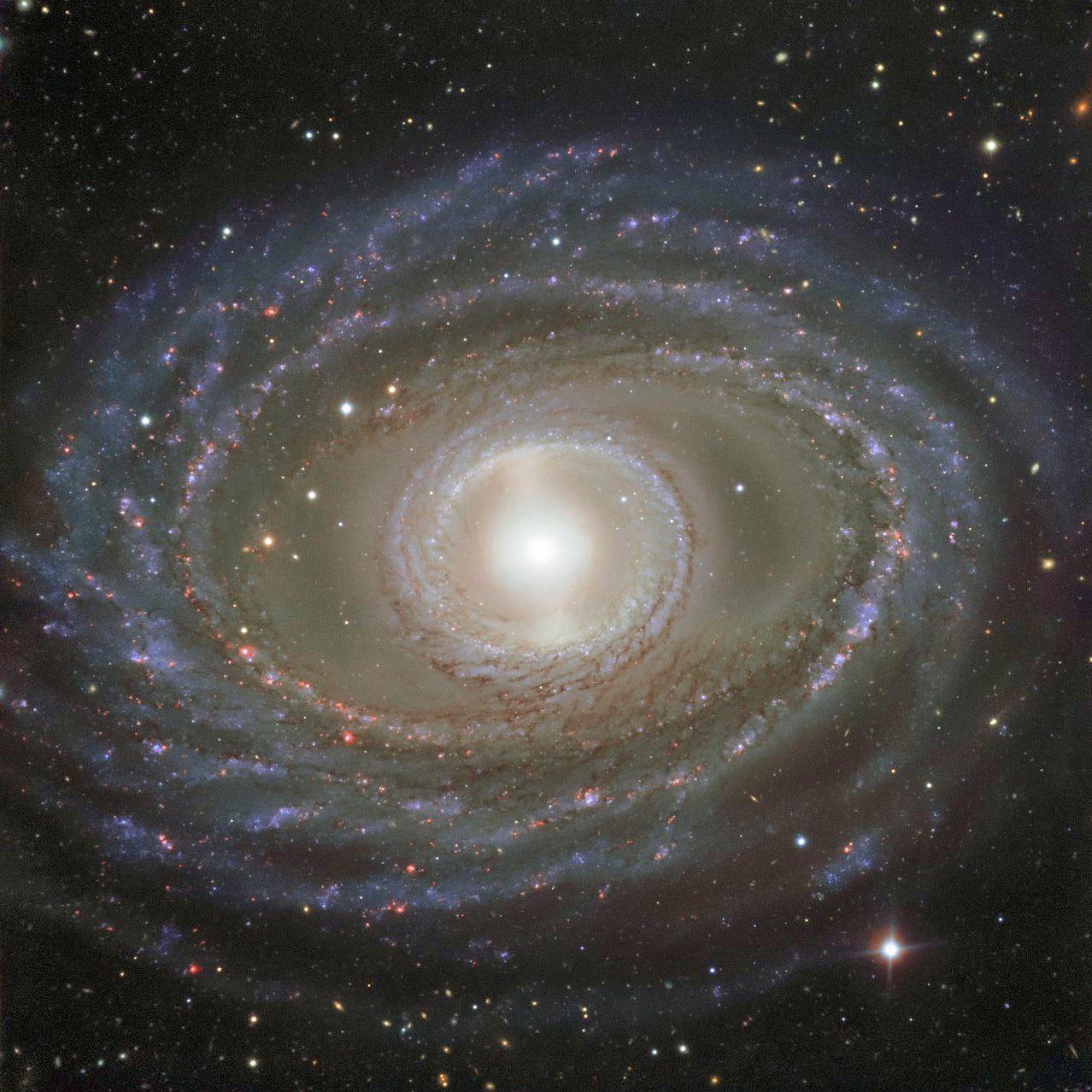 108-NGC1398-e1600882137639.jpg