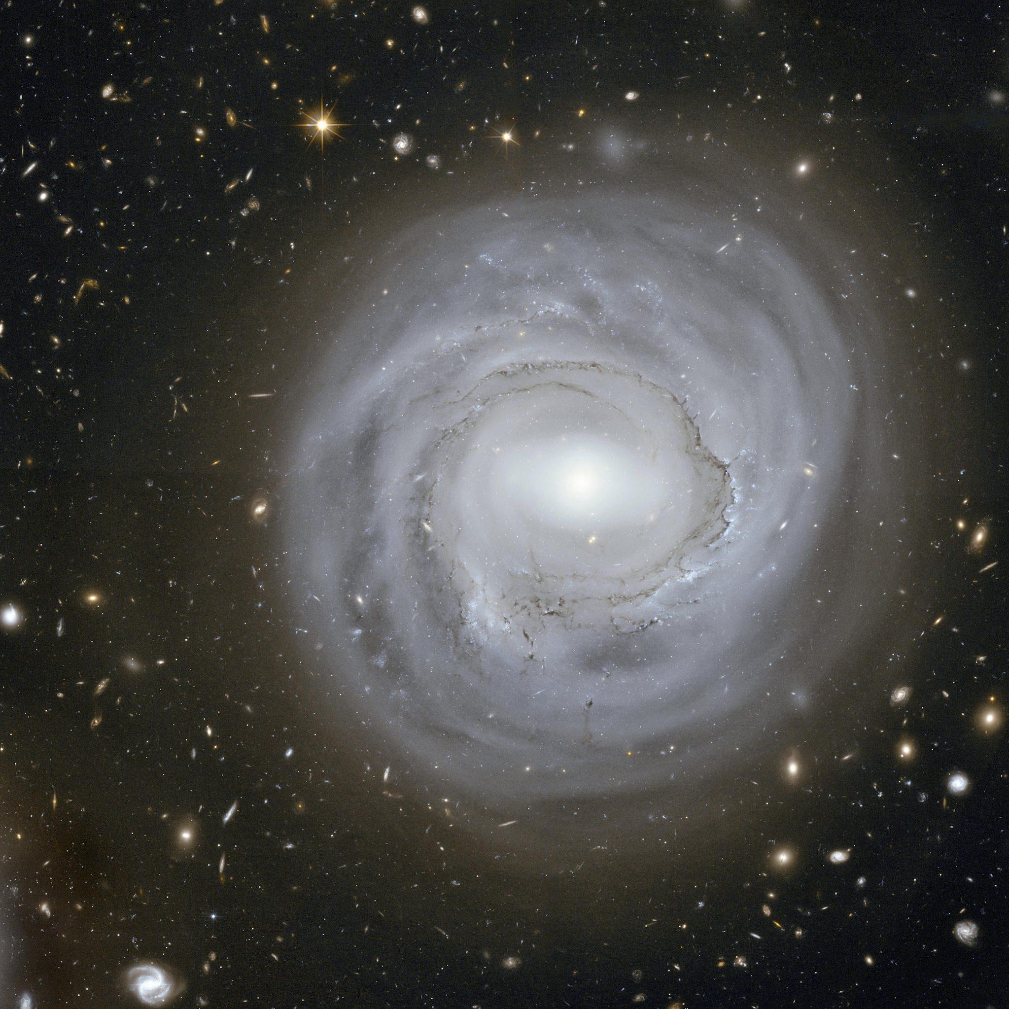 119-NGC4921-e1601834972828.jpg